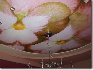 Нежно-розовые натяжные потолки Черутти