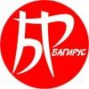 Логотип БАГИРУС